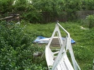 backyard_050909
